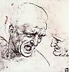 Leonardo_da_vinci_head_studies_fo_2