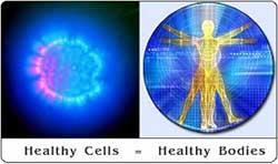 Healthycellsbodies