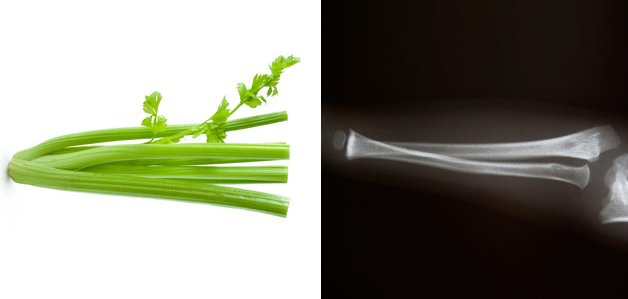Celerybone